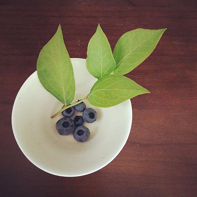 小さなカップにブルーベリー旬のフルーツをおすそわけ#アトリエ #マーニ