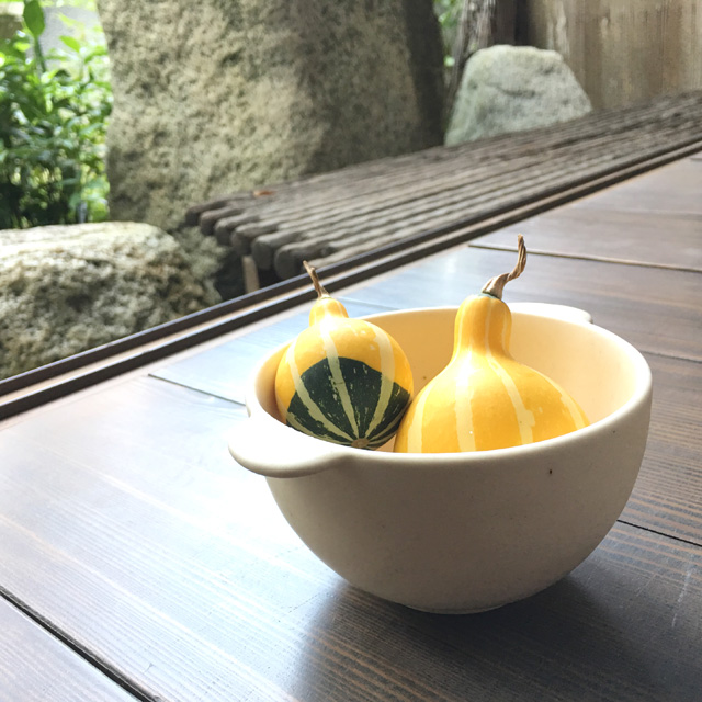 スープボールにおもちゃ南京をふたつ入れた様子