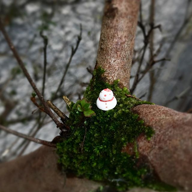 小さな豆つぶ雪だるまが木の枝に佇む様子