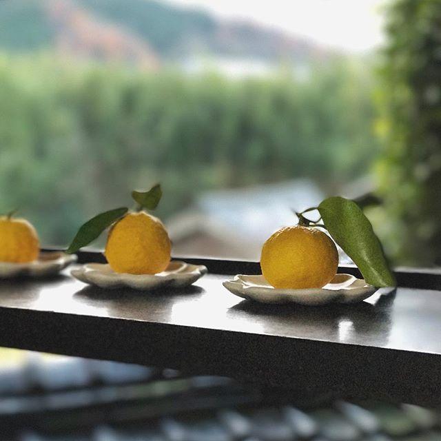 柚子と輪花豆皿の写真