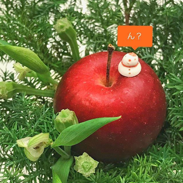 姫りんごと豆つぶ雪だるまの写真