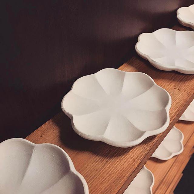 輪花豆皿を沢山成形した写真