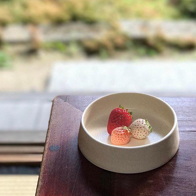 3色の苺と銅鑼鉢の写真