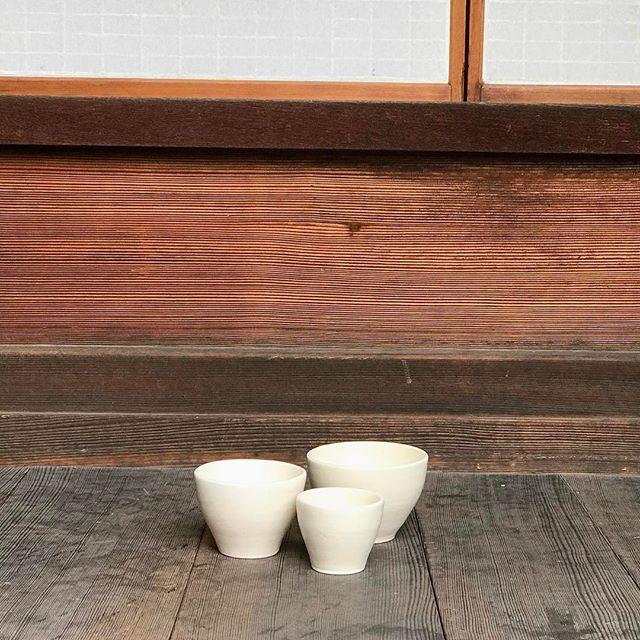 3つのサイズのフリーカップを並べて撮った写真