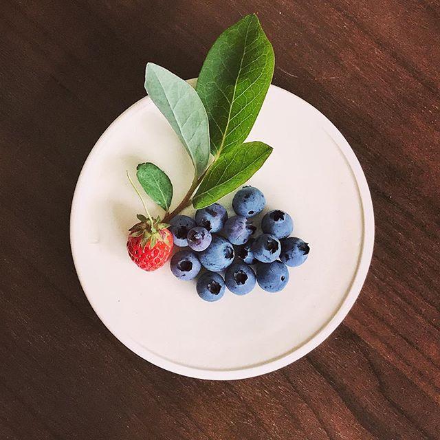 リバーシブルな銅鑼鉢にブルーベリーとイチゴを載せた写真